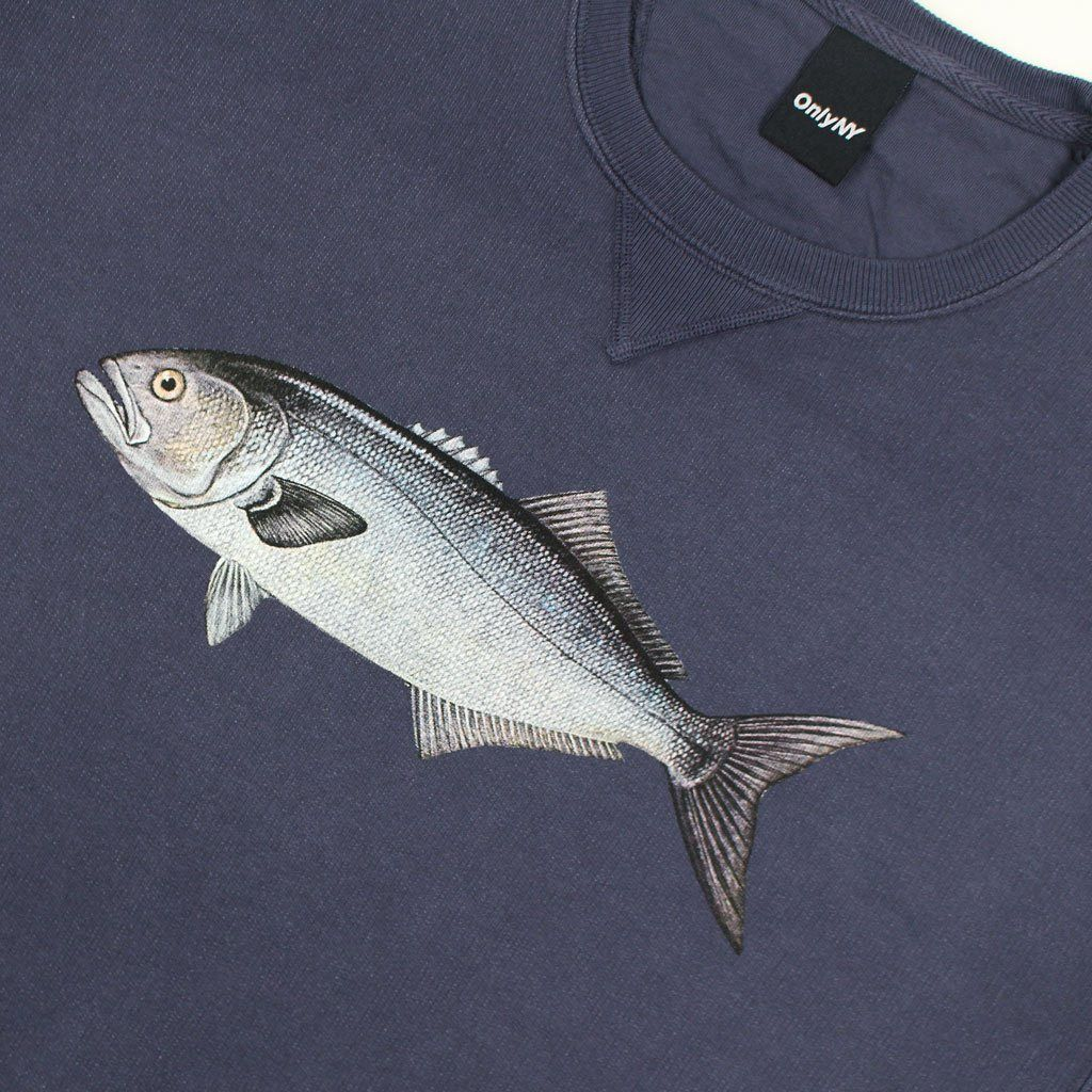Bluefish Crewneck