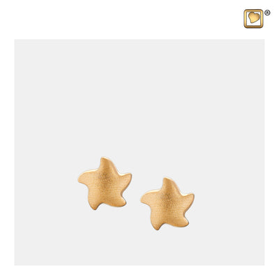 ER1031 STUD EARRINGS Angelic Star™ Gold Vermeil Two Tone