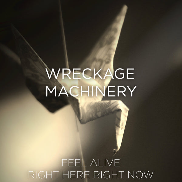 Wreckage Machinery - Feel Alive / Right Here Right Now