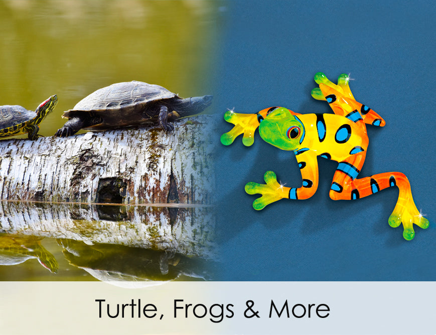 Turtles, frogs and more