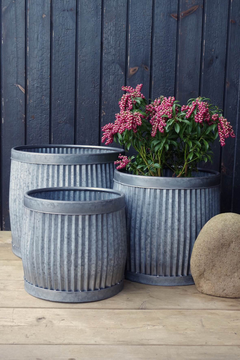 Galvanised Dolly Tub Planters - Set of 3