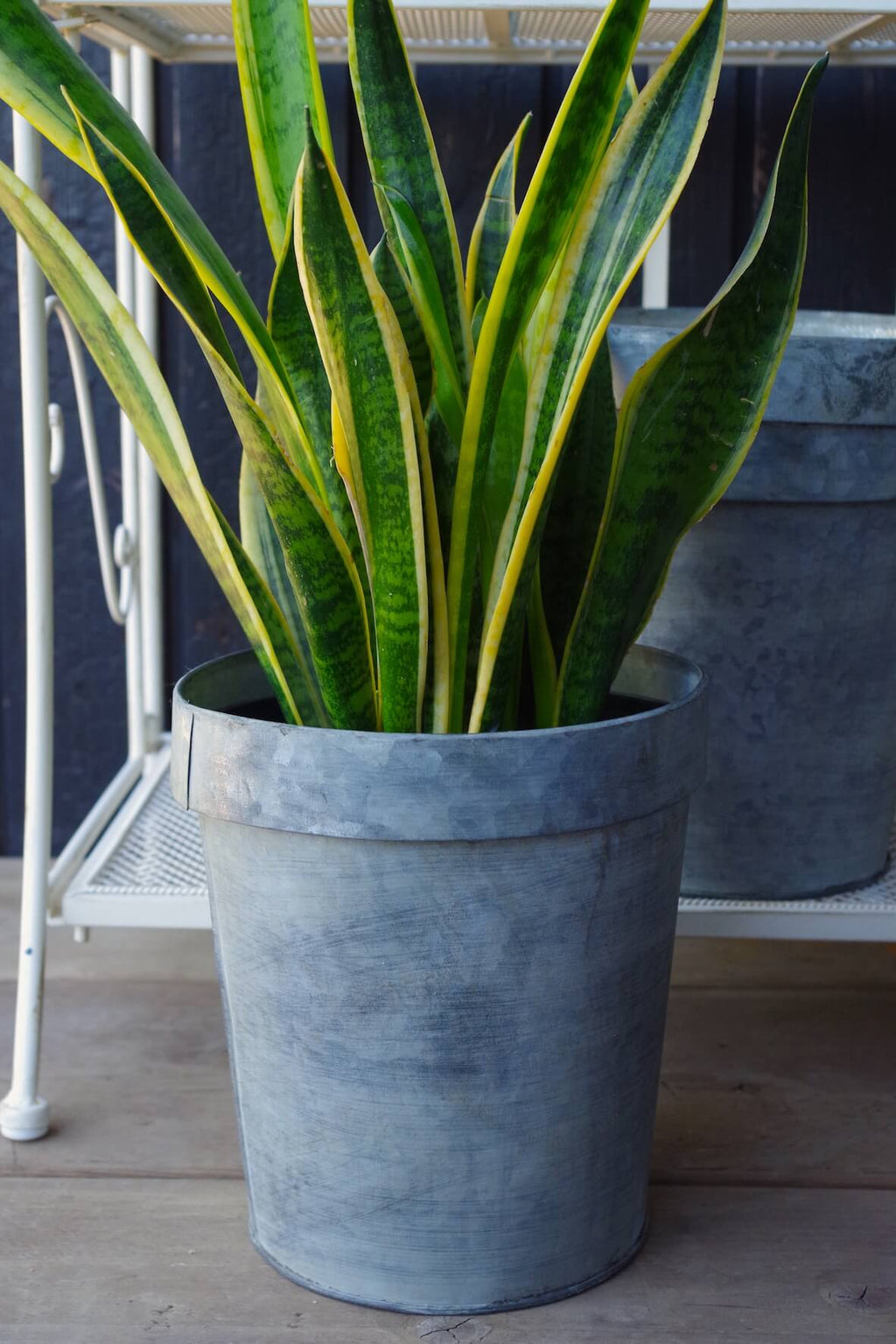 Galvanised Flower Pot Extra Large - Set of 3