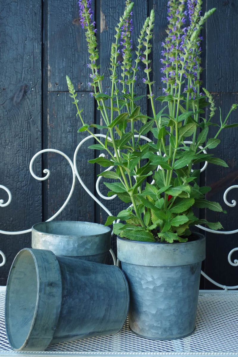 Galvanised Flower Pot Medium - Set of 3