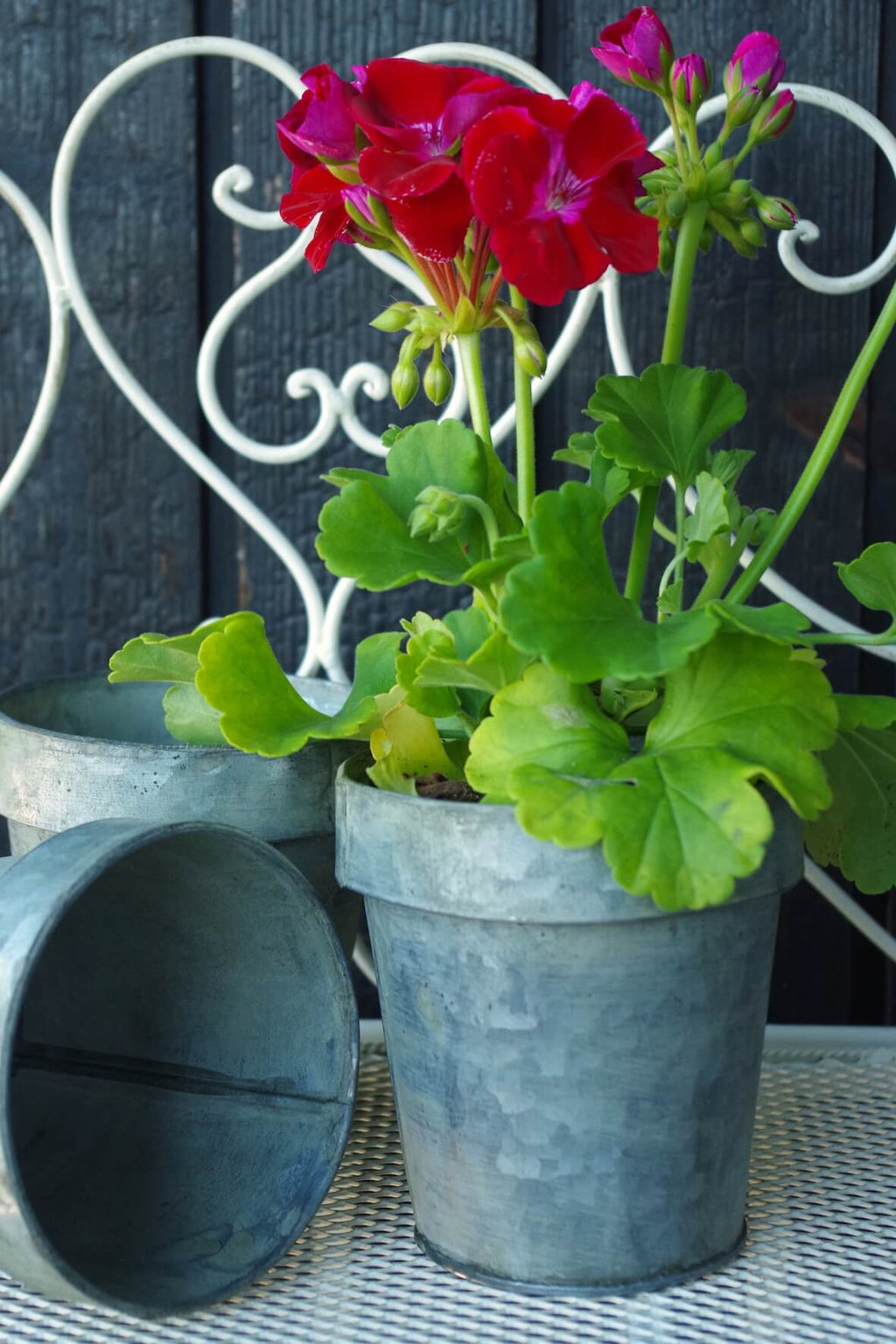 Galvanised Flower Pot Small - Set of 3