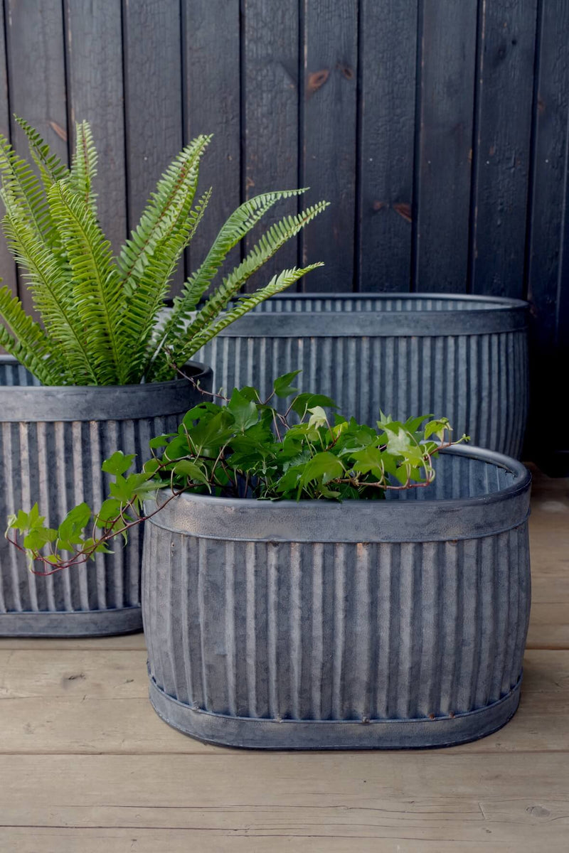 Galvanised Fluted Oval Planters - Set of 3