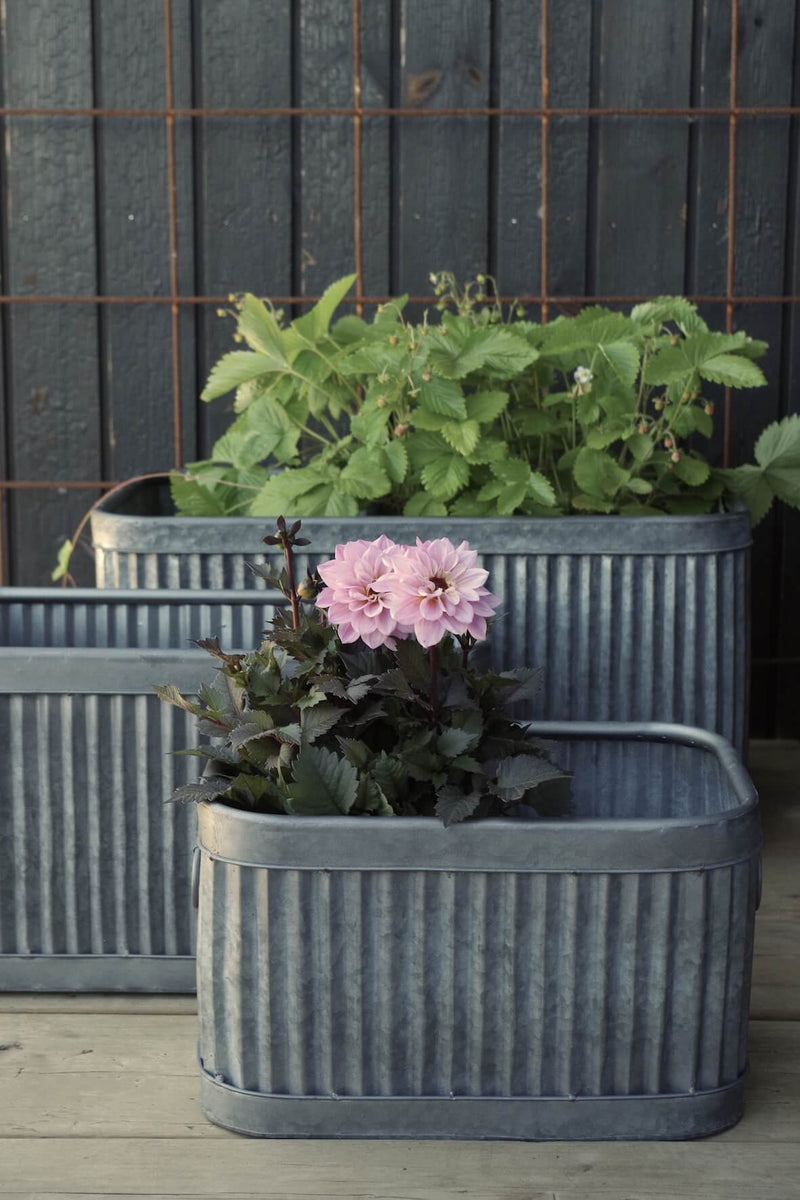 Galvanised Fluted Rectangular Planters - Set of 3