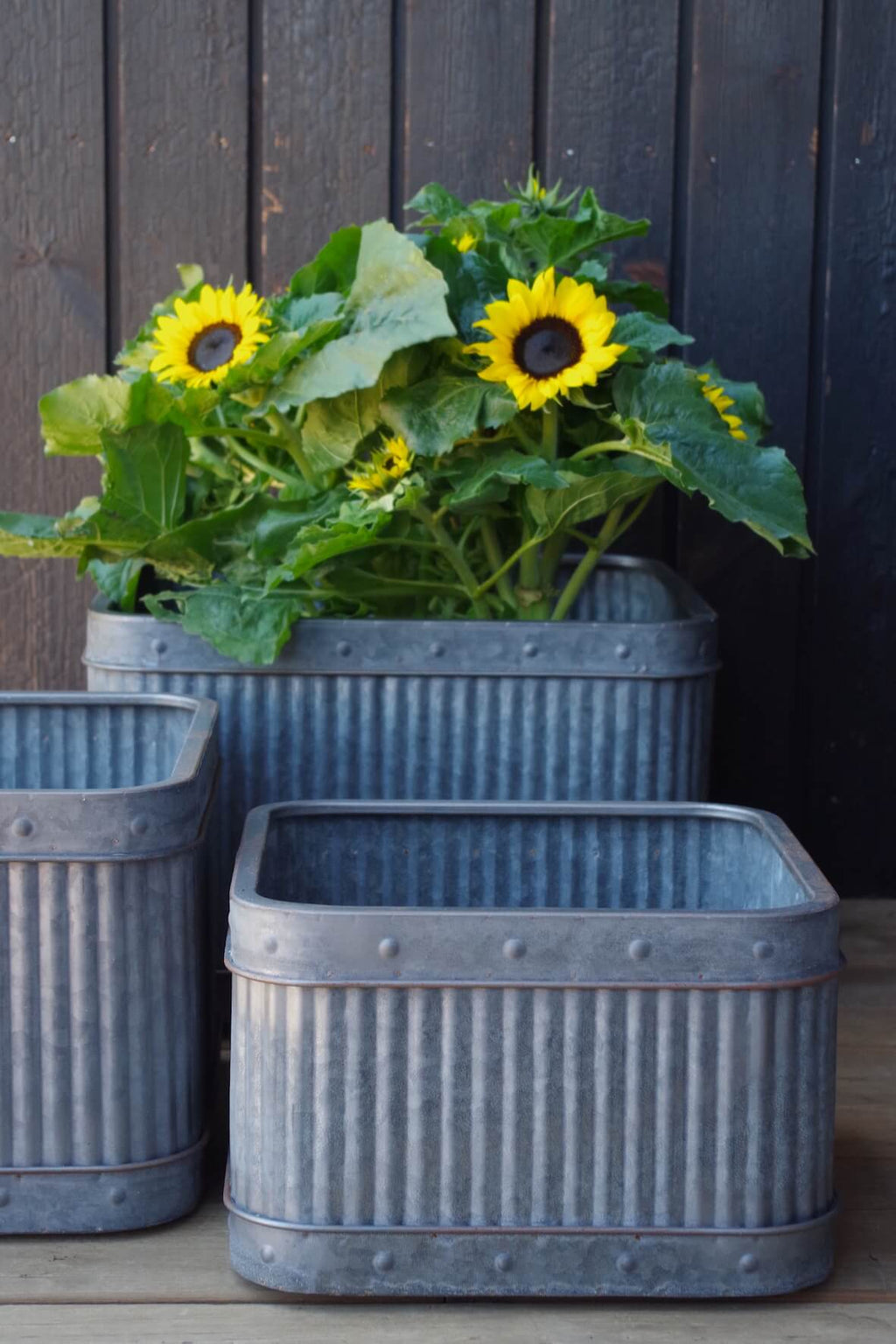 Galvanised Fluted Square Planters - Set of 3