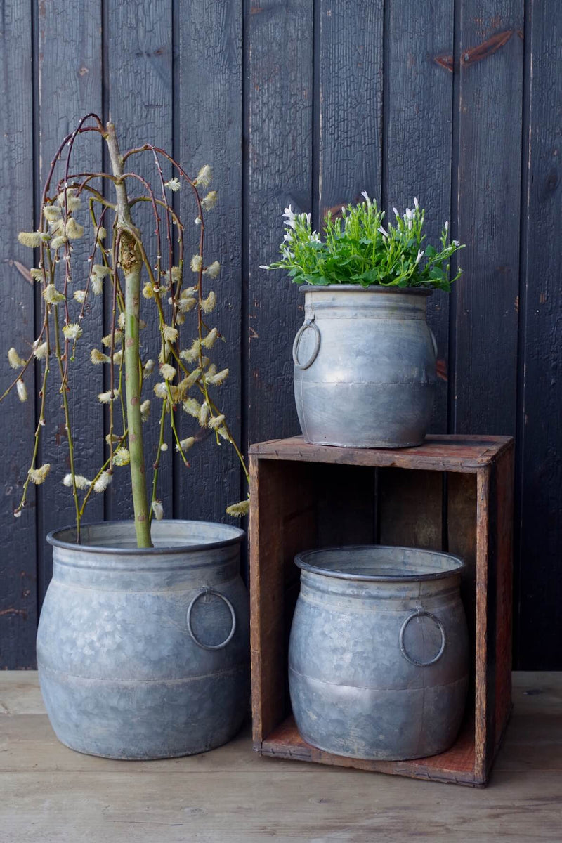Galvanised Ollam Planters - Set of 3