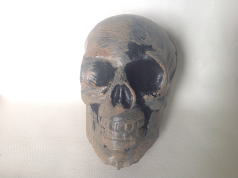 Plastic Skull - Pack of 12