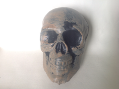 Plastic Skull - Pack of 10