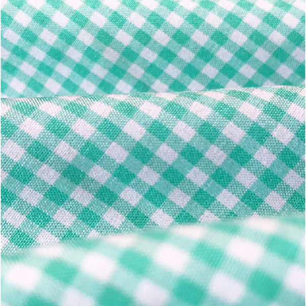 """The Charley"" Mint Green Gingham"