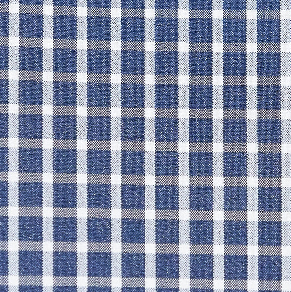 """The Rosy"" Blue and White Mini Plaid"