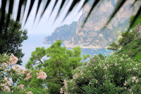 Soleil Blue Adventures: Beautiful Capri