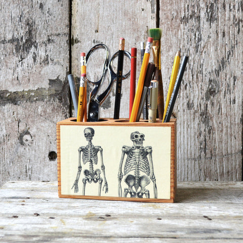 Medium Medical Desk Caddy: No. 01, Skeleton