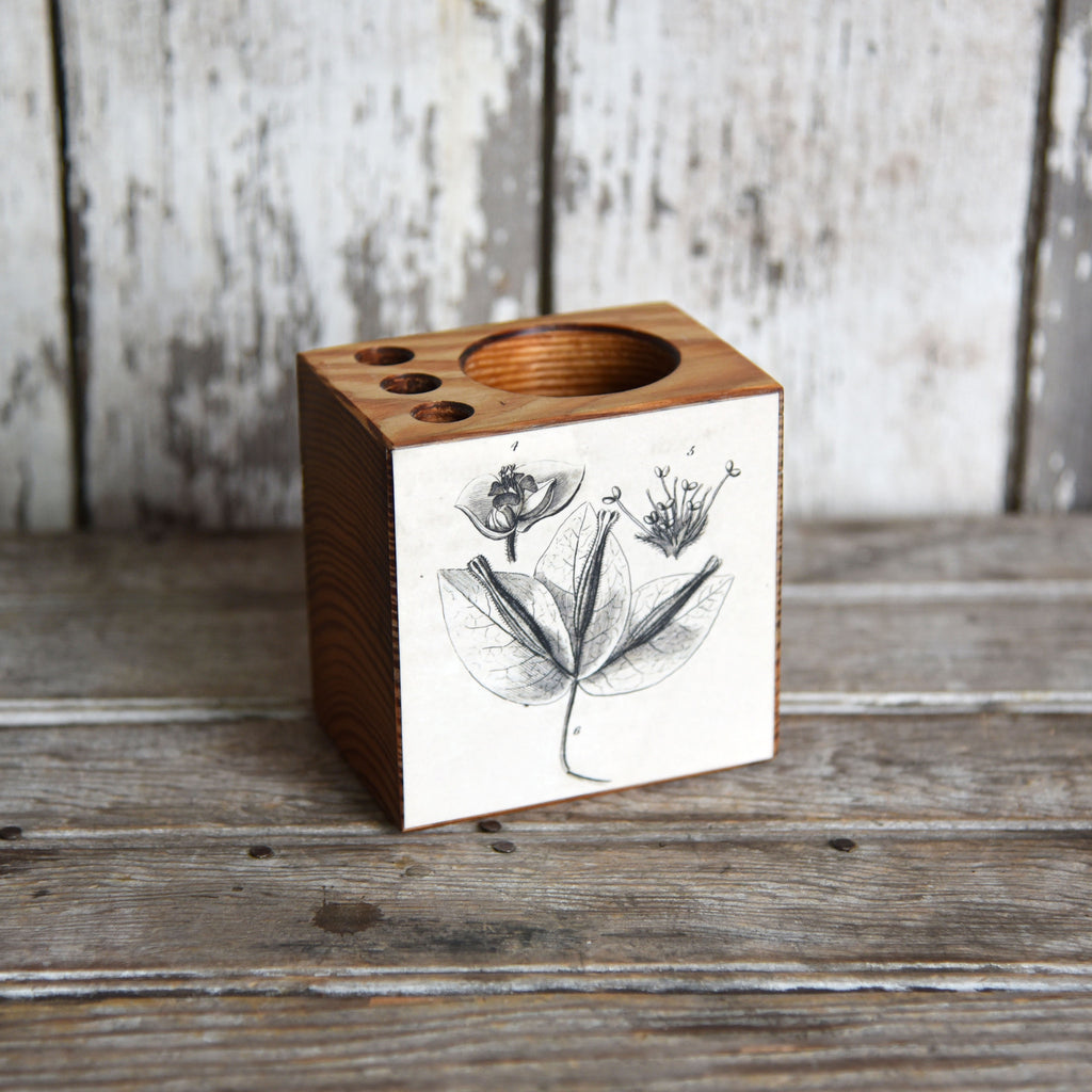 Small Botanical Desk Caddy: No. 3, Fig. 4