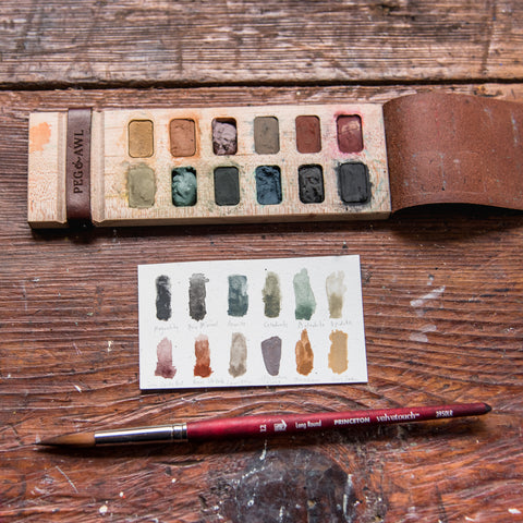 Iris Painter's Palette