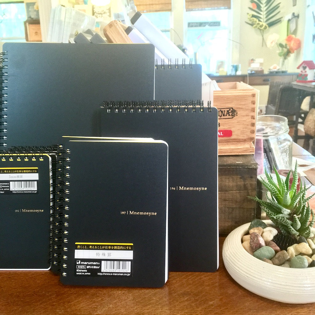 Note Taking, Sketching, Scheduling - There's a Mnemosyne Notebook for Everything