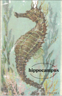 Hippocampus Zine by The Paper Seahorse