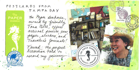 postcards from tampa bay the paper seahorse tona bell