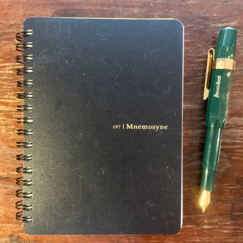 mnemosyne and fountain pen