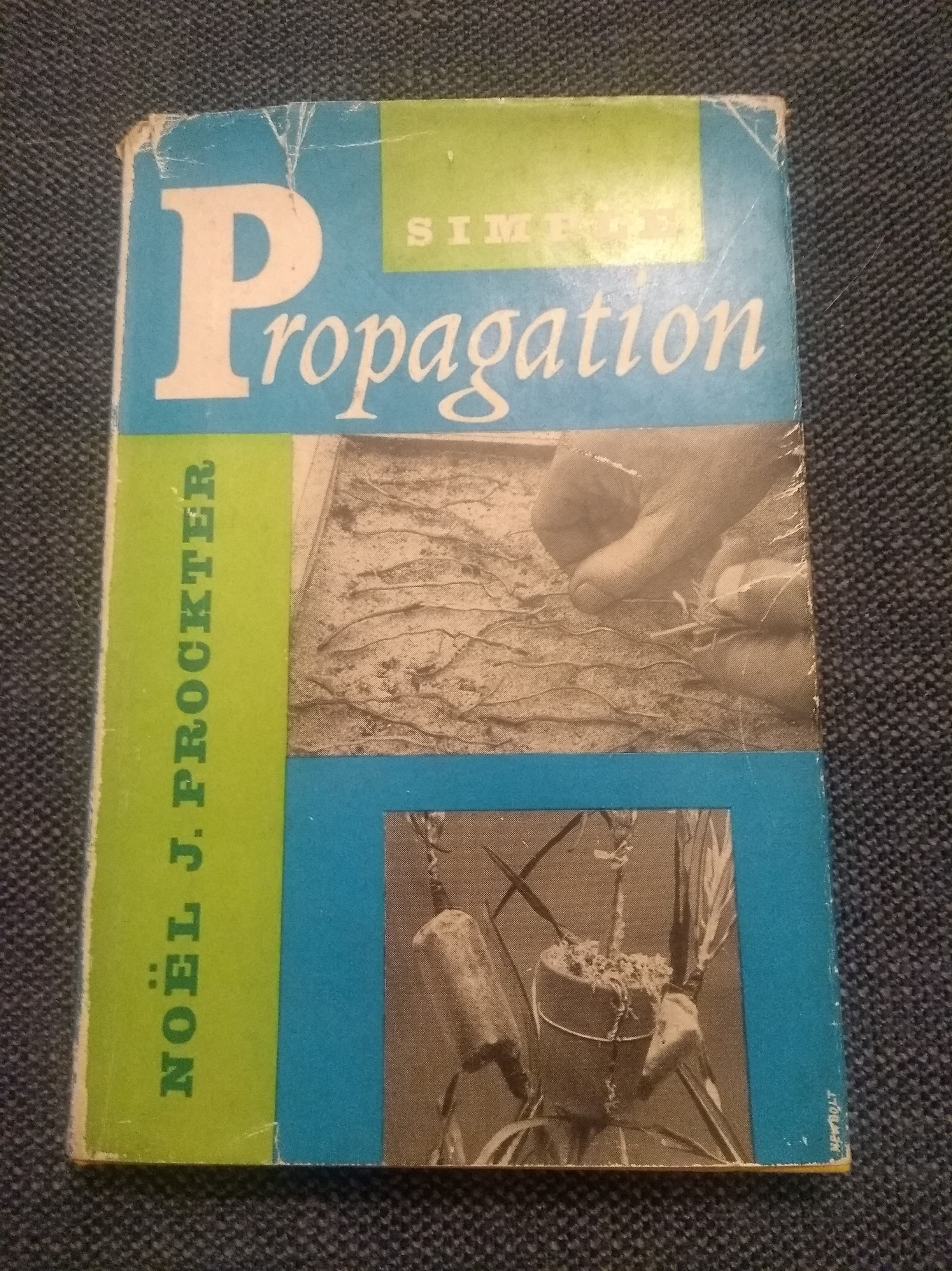 Simple Propagation, by Noel J Prockter