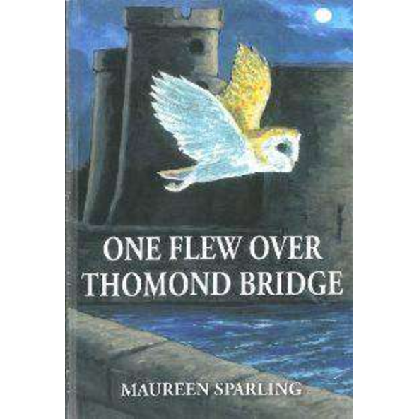 One Flew Over Thomond Bridge, by Maureen Sparling