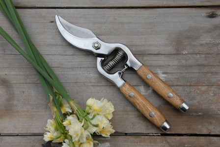 Secateurs, Wood Handle