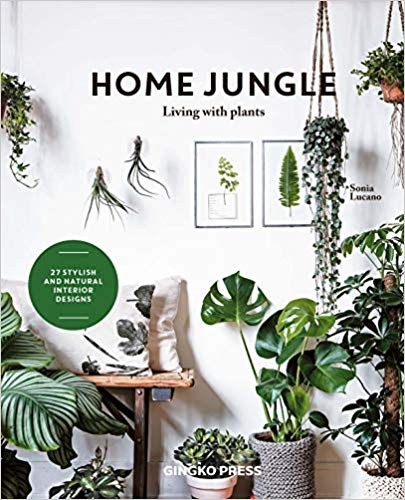 Home Jungle (Sonia Lucano)
