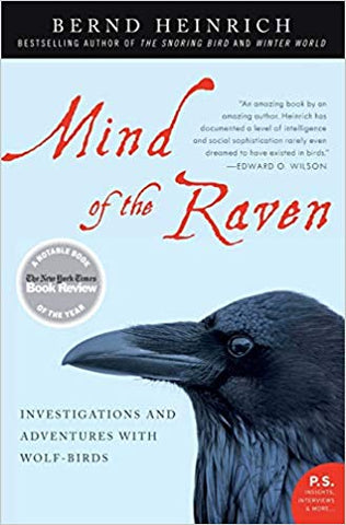 Mind of the Raven (Bernd Heinrich)