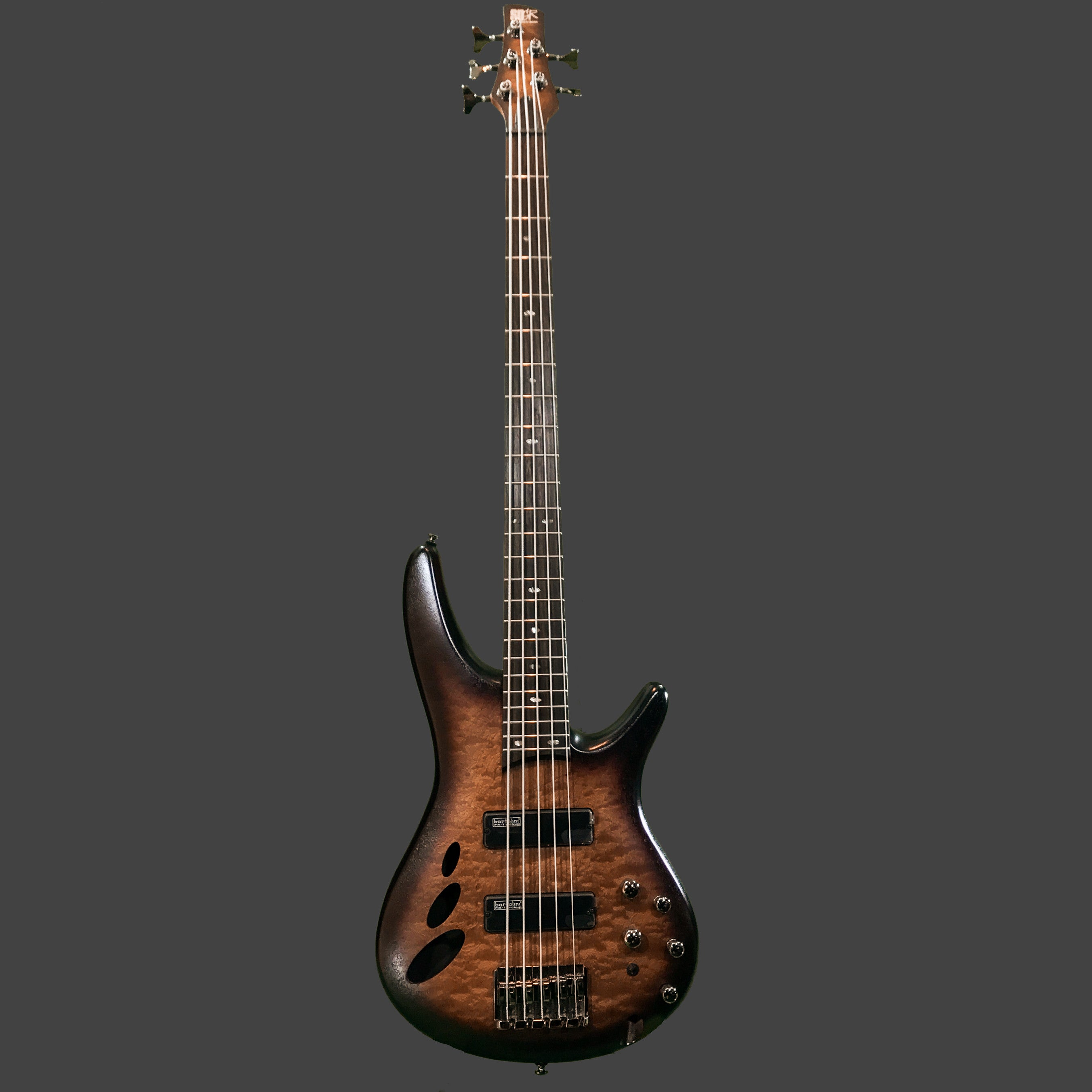 Ibanez SR30TH5 5-String Electric Bass Guitar - Huber Breese Music