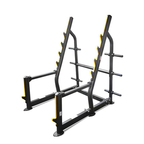 Element Fitness Squat Rack