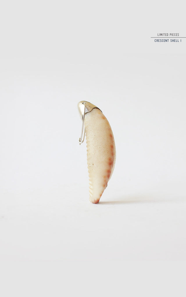 Crescent Shell Earring