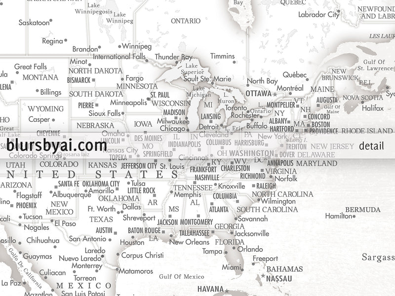 "Personalized world map with US state capitals, cities, states and countries, canvas print or push pin map. ""Maeli White"""