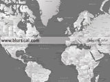 Custom quote - Printable world map with cities, capitals, countries, US States... labeled. Silver leaf.