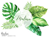 Watercolor tropical leaves clipart, monstera deliciosa, banana leaf & palm, commercial license