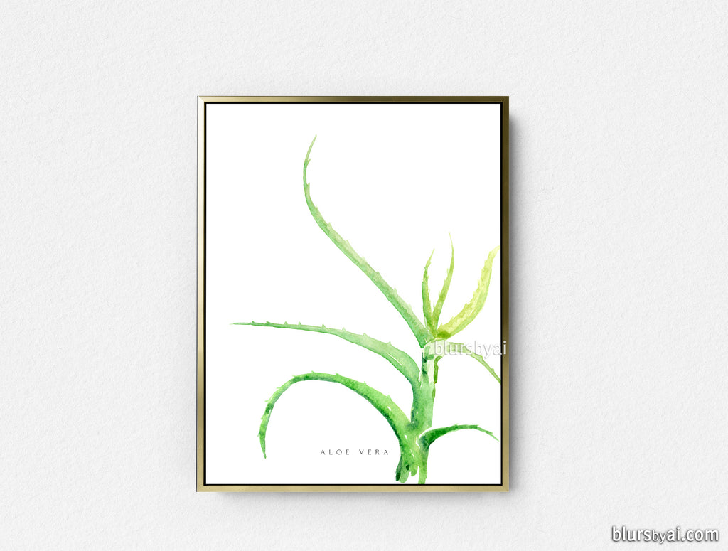 Printable aloe vera watercolor illustration - Personal use