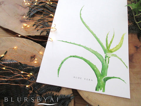 Printable aloe vera watercolor illustration