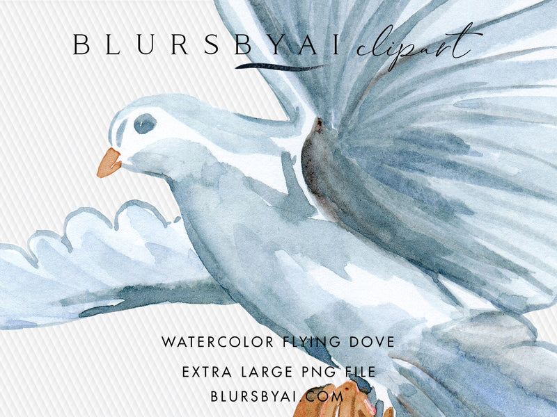 Watercolor flying dove clipart, commercial license