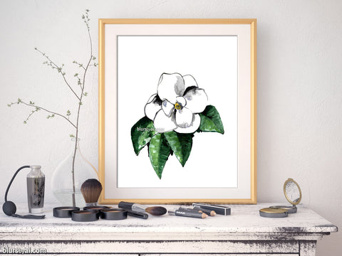 Printable watercolor white magnolia illustration