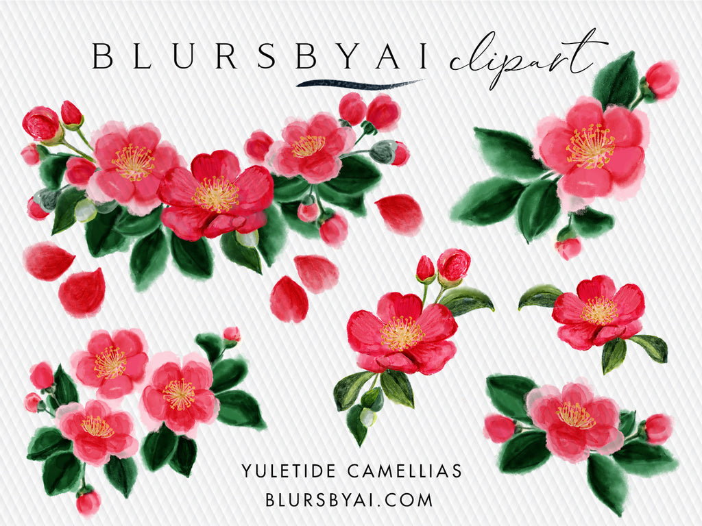 Winter florals: yuletide camellias clipart, commercial license