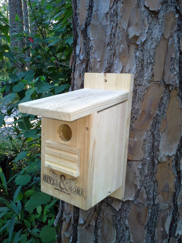 Small Cypress Bird House