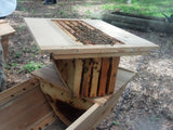 5 Frame Hive Conversion Rack