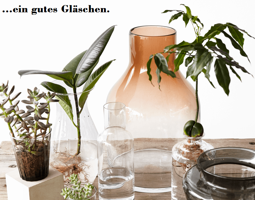 Glasware bei Interio