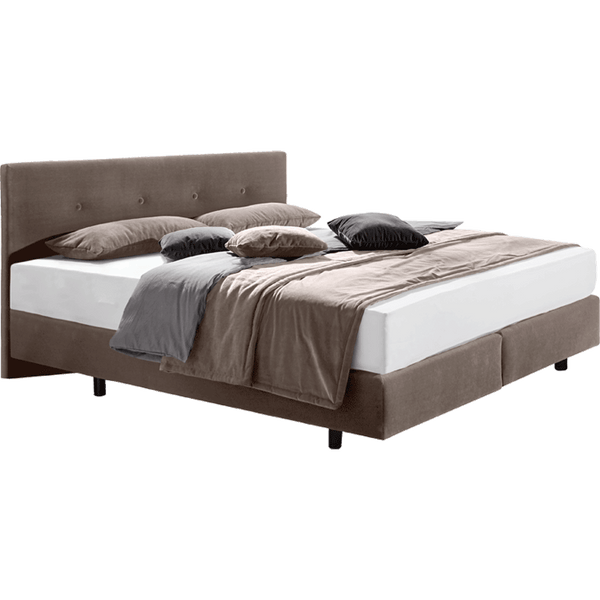 AREAS Boxspringbett taupe 160x200