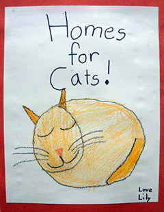The Cat House Lincoln Nebraska — Homes for Cats Poster