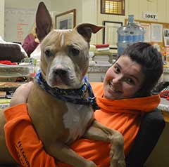 CoatHook pet comb fundraiser - Harvest Hills Animal Shelter - Big dog on volunteer's lap