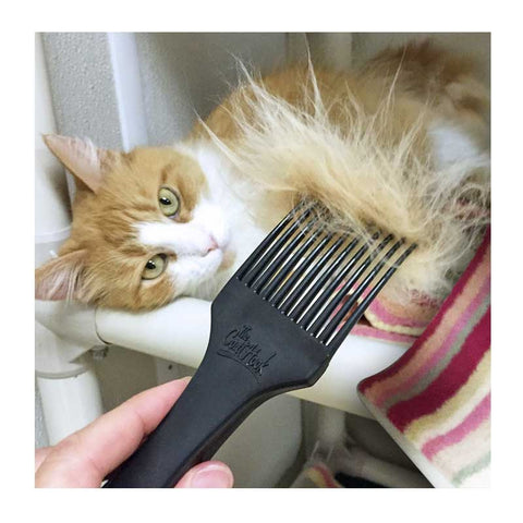 The CoatHook pet comb detangles and desheds cat fur
