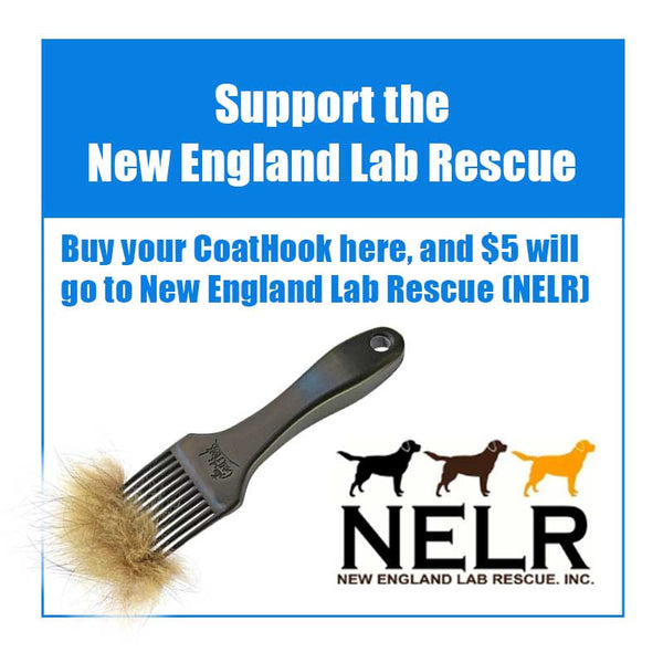 A CoatHook to Benefit <br />New England Lab Rescue