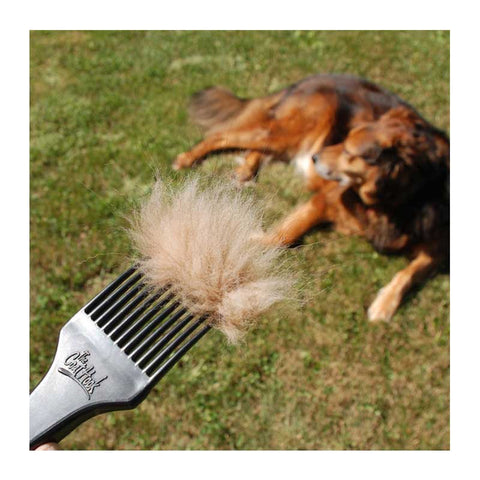 CoatHook pet comb full of shedding fur with dog in background