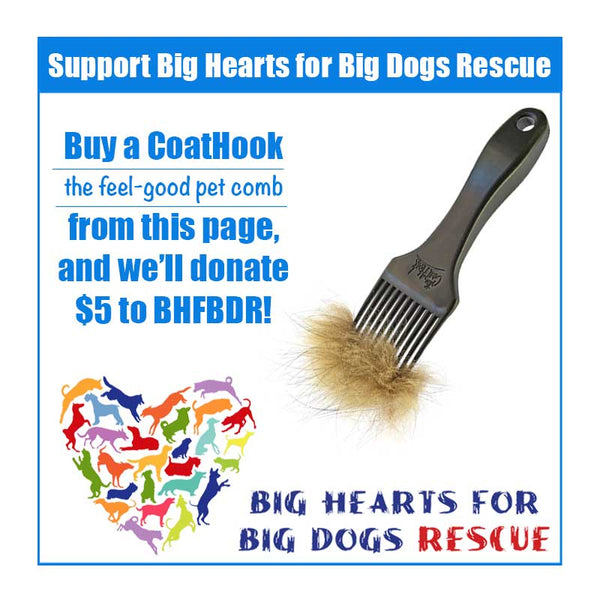 A CoatHook to Benefit <br />Big Hearts for Big Dogs Rescue